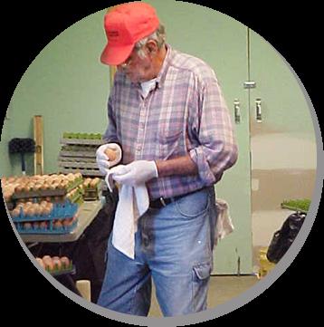 Bob Getting Eggs Ready For Incubator